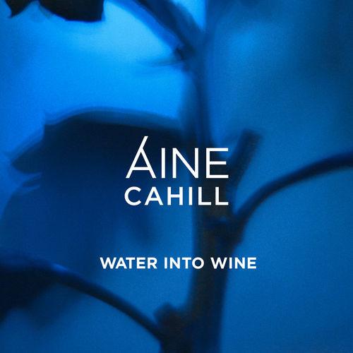 Water Into Wine - id|artist|title|duration ### 740|Áine Cahill|Water Into Wine|195070 - Áine Cahill