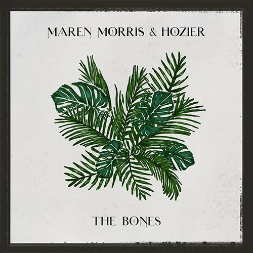 The Bones - id artist title duration ### 926 Maren Morris The Bones 195050 - Maren Morris